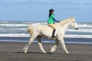 cruise and i trotting woman's day behind the scenes
