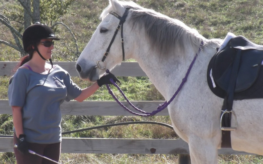 Training horses and men – it's all about boundaries.