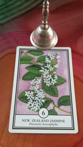FLFENZ6 Native Jasmine card. Recalibration Reading